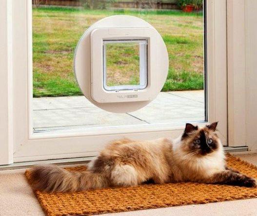 Дверные москитные сетки с дверками для животных